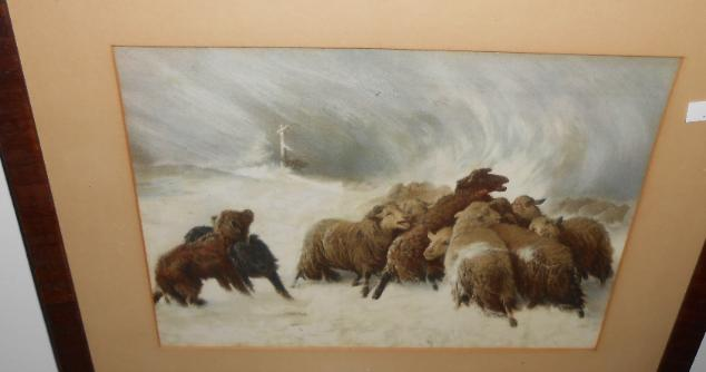 Pastoral of sheep in winter