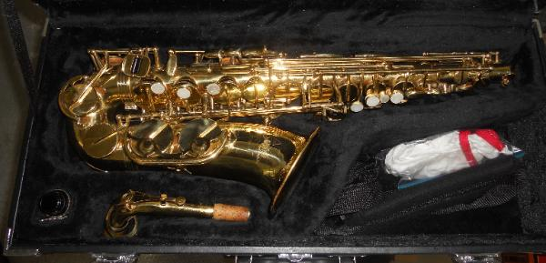 For auction Alpine Woodwinds Saxophone in hard case